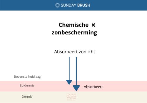 Infographic - chemische zonbescherming